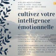 atelier-cultivez-votre-intelligence-emotionnelle