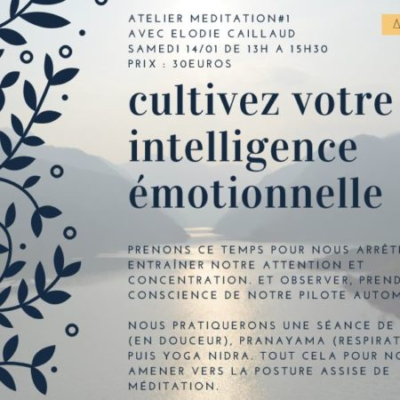 atelier-cultivez-votre-intelligence-emotionnelle